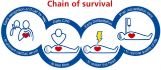 sudden-cardiac-chain-of-survival